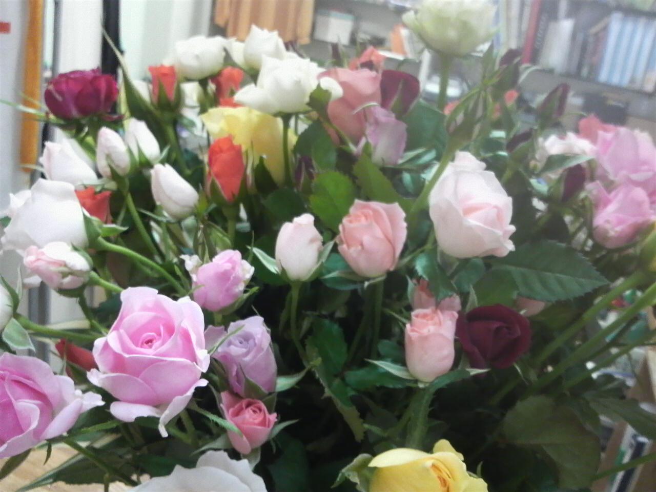 薔薇…きれい〜(*<br />  ´∇`*)